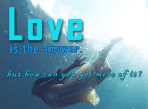 Love is the answer, but how can you get more of it?
